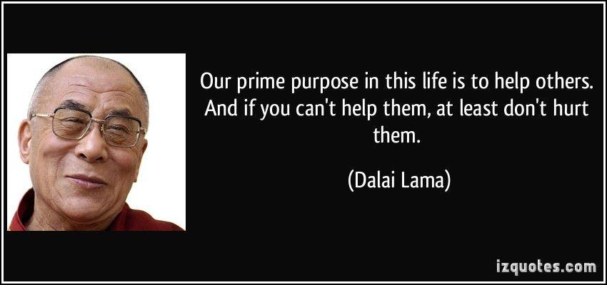 Dalai Lama   Só Existem Dois Dias Na Vida Em Que Nada Pode Ser Feito. Um Se  Chama Ontem E O Outro Se Chama Amanhã   Frases E Citações
