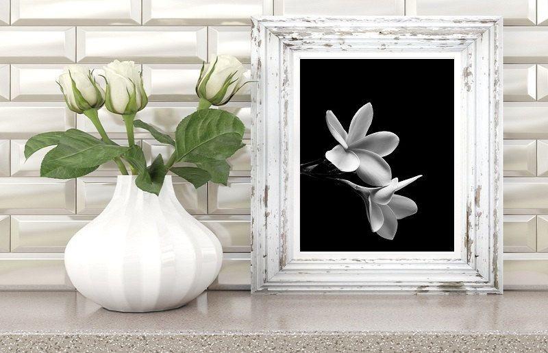 black and white flower, black and white photography, black and white prints, flowers print, flowers photo, nature prints, modern wall art di AlemiPrints su Etsy