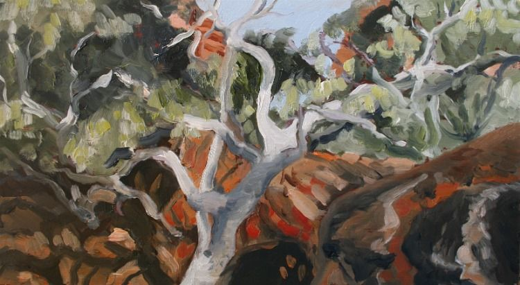 Bush Landscape Sue Rowsell Landscape Artist New Art Landscape