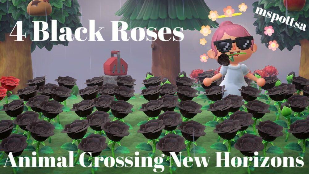 4 Black Roses Hybrid Roses Flowers Set Animal Crossing