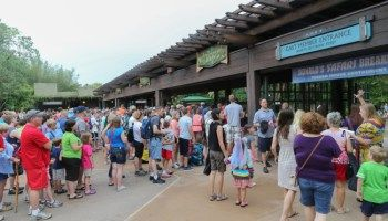 The REAL Opening Time at Disney