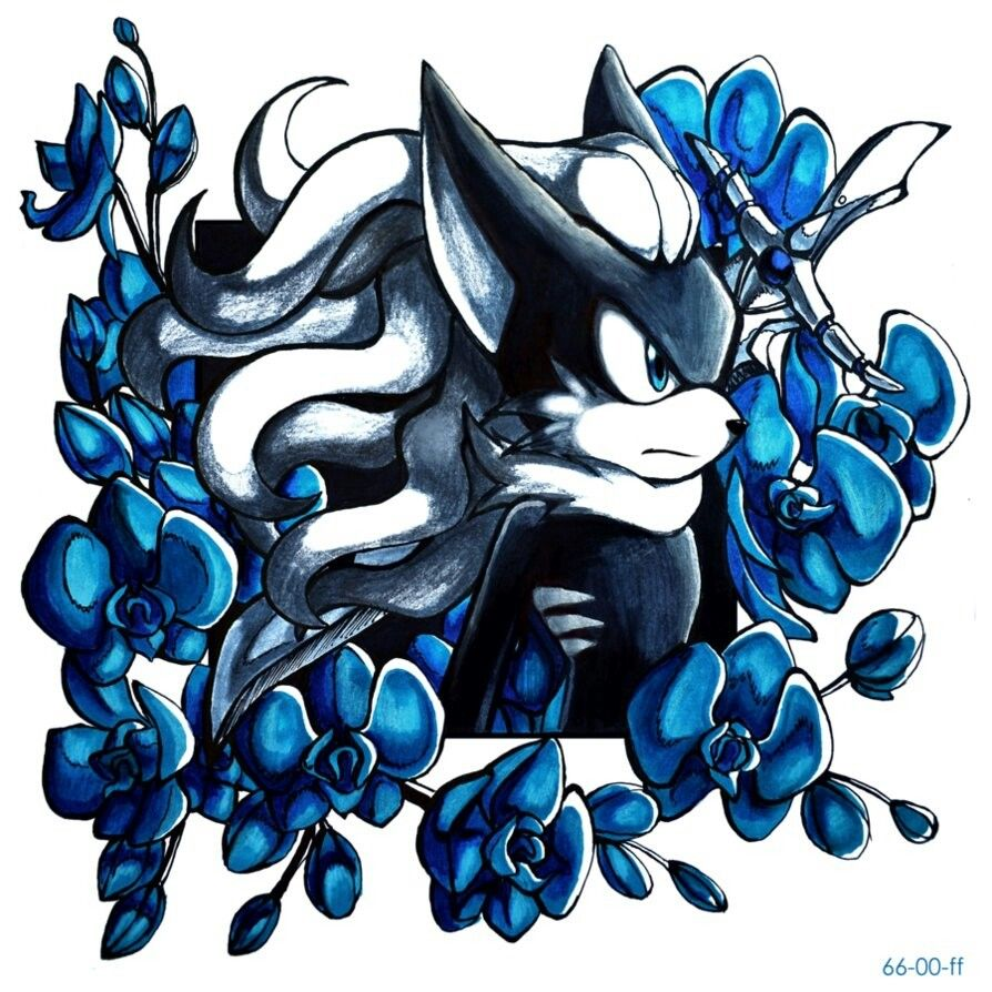 Pin By Sweet Angel Wings On Sonic Fan Art Sonic Fan Art Sonic Art Shadow The Hedgehog