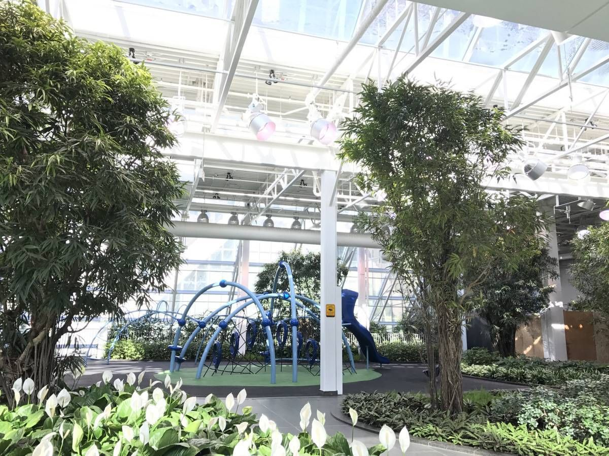 Better late than never devonian gardens to reopen in