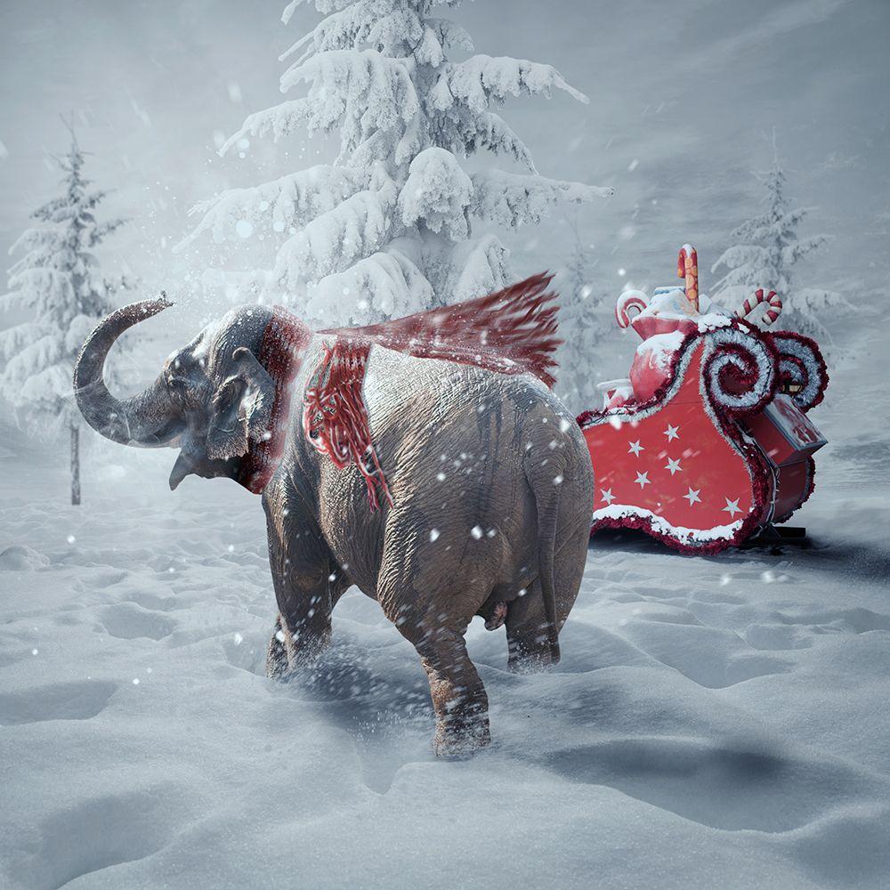 Merry Christmas Caras Ionut