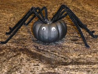 Theresa S Mixed Nuts Diy Pumpkin Spider Diy Pumpkin Pumpkin Spider Spider Crafts