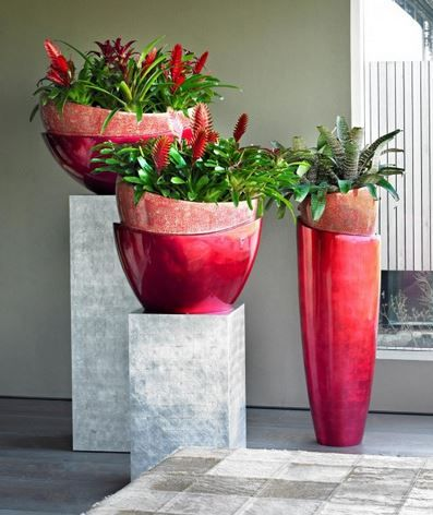 Wow Factor Indoor Contemporary Design Using Contrasting Flowering Red Plants Ideal For High Profile Office