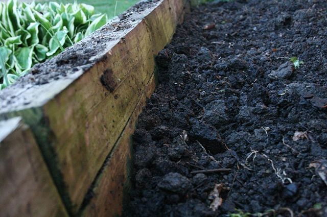 Diy Soil Mix Two Parts Topsoil One Part Mushroom Compost And One