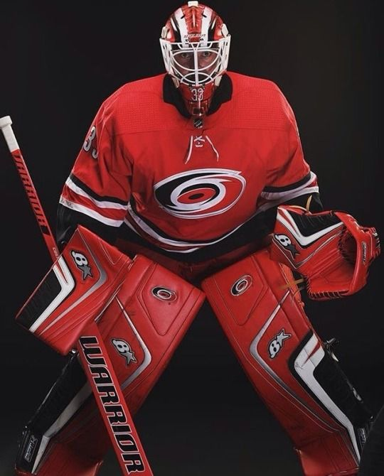 Scott Darling A Hurricane Goalie Gear Hockey Goalie Ice Hockey