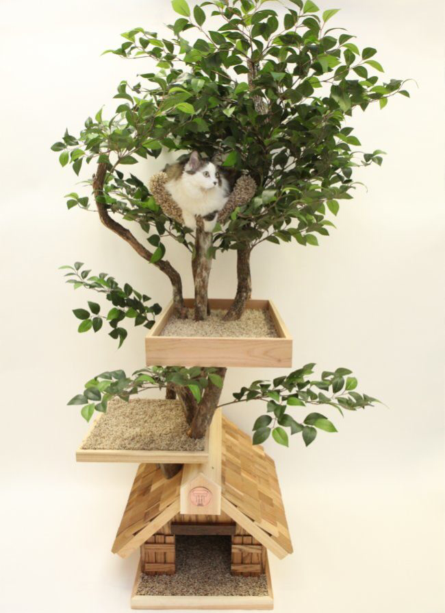 Cat Trees 20 Photo Funny Cat Dompict Com Plant Decor Indoor Indoor Plants Eco Friendly House