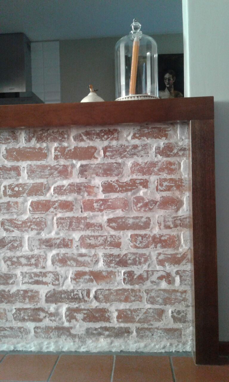 This Wall Was Plastered I Removed The Plaster Washed It Down With Rhinolite And Sealed It With Clear Polyurethan Exposed Brick Walls Exposed Brick Brick Wall