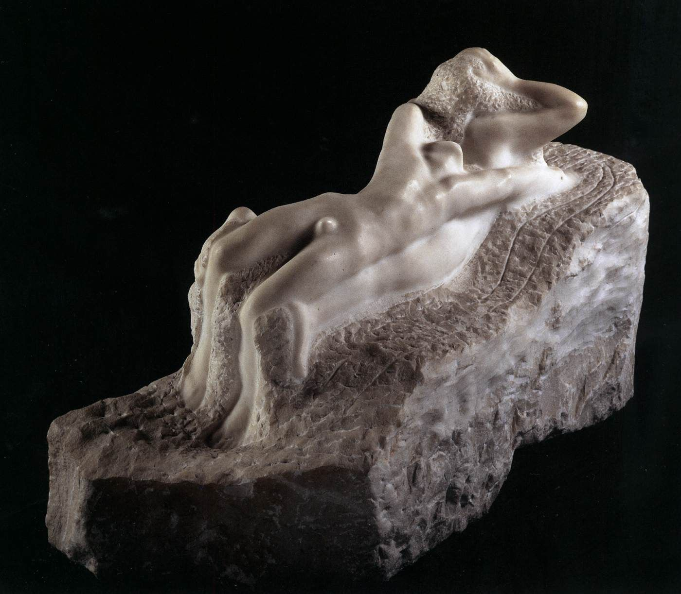 Rodin Collection