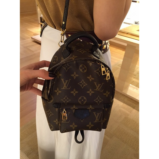 6f3d8a4fc40b Louis Vuitton Monogram Canvas Palm Springs Backpack Mini Bag 2 ...