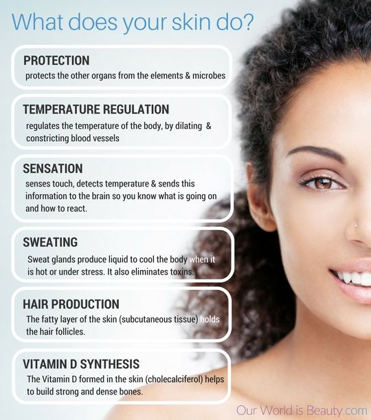 The Functions Of Your Skin Rock Your Skin Care With The Complete Guide On Our World Is Beauty Http Ourworldis Skin Care Guide Skin Care Complete Skin Care