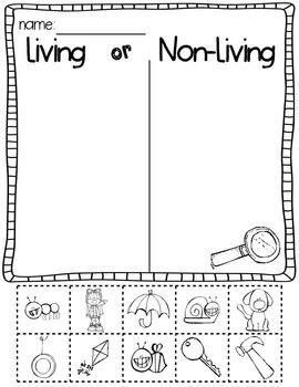 Science Activities for Kindergarten Living and Nonliving