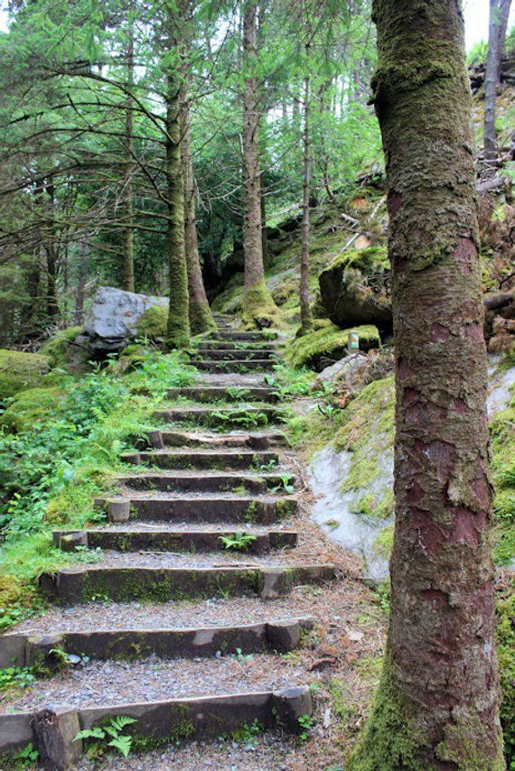 Ireland Photo Print, Stone Staircase, Gougane Barra, Trees