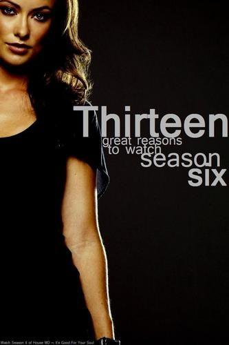 House MD Fans Fan Art: PAW Round 3: Season 6 Promotional Poster (Thirteen)