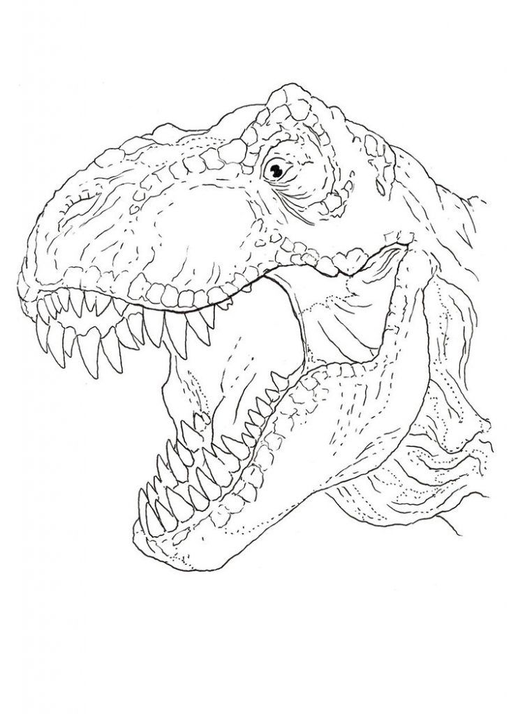 Trex Coloring Pages Kids Printable Coloring Pages Dinosaur