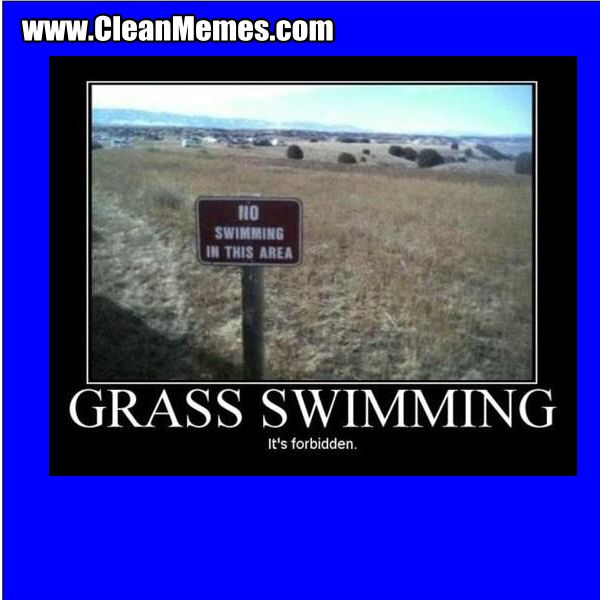 Swimming can now be done in grass
