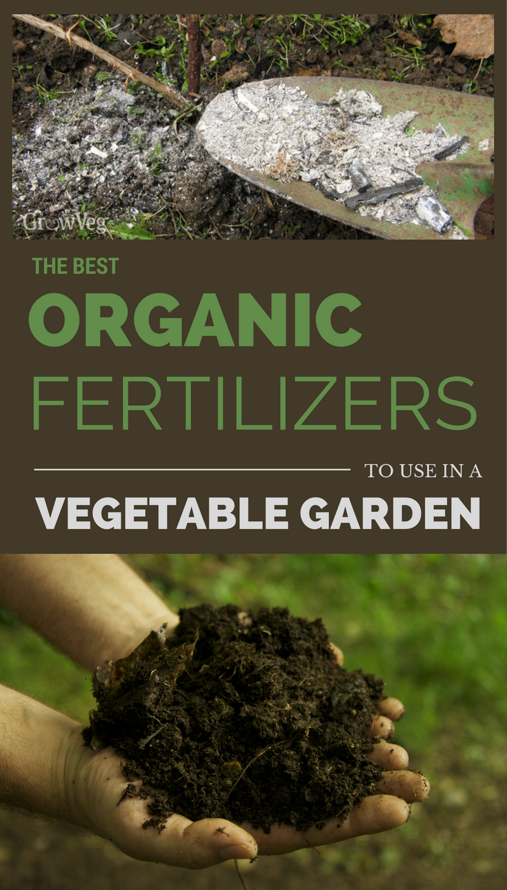 The Best Organic Fertilizers To Use In A Vegetable Garden | Garden ...