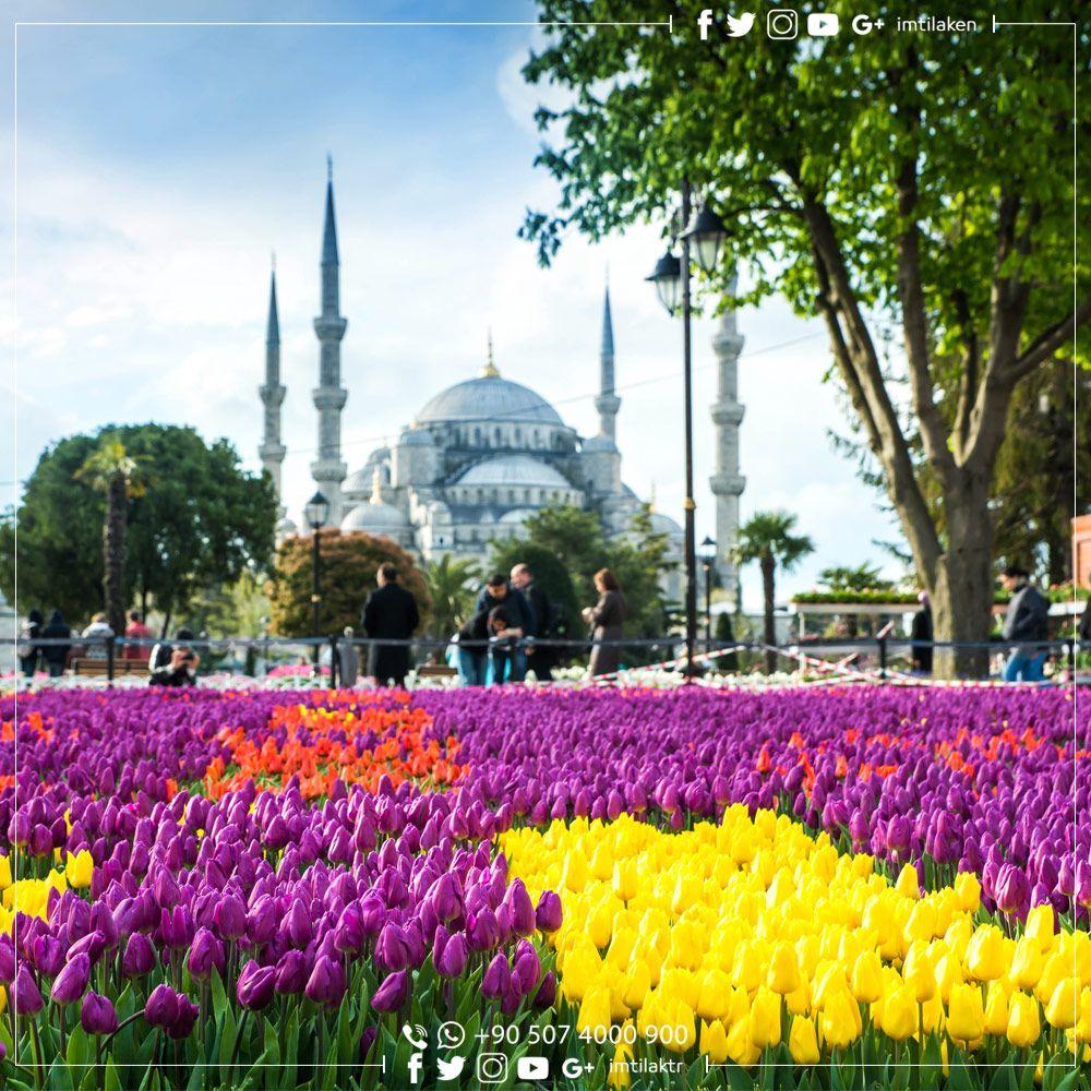 يجدر بنا أن نسامح أن نكتب رسائل السلام أن نرتدي أجنحة ملونه أن نمتلىء بالبياض أن نكون اوطانا صغيرة ينمو فيها الربيع صباح Taj Mahal Landmarks Building