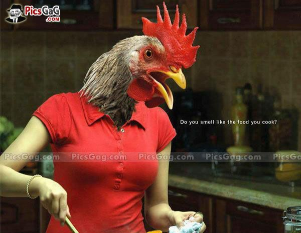 1000 Ideas About Funny Chicken Pictures On Pinterest: Chicken Girl Funny Cooking [ More Funny Pictures: Http