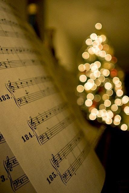 Have Yourself A Merry Little Christmas #merry #christmas #lights #christmaslights (With images ...