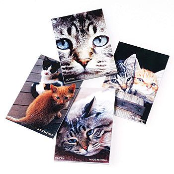Each set of Cat Paper has one dozen assorted memo pads which contain twenty unlined pages per pad and measure 3 1/4 inches high x 2 1/2 inches wide.