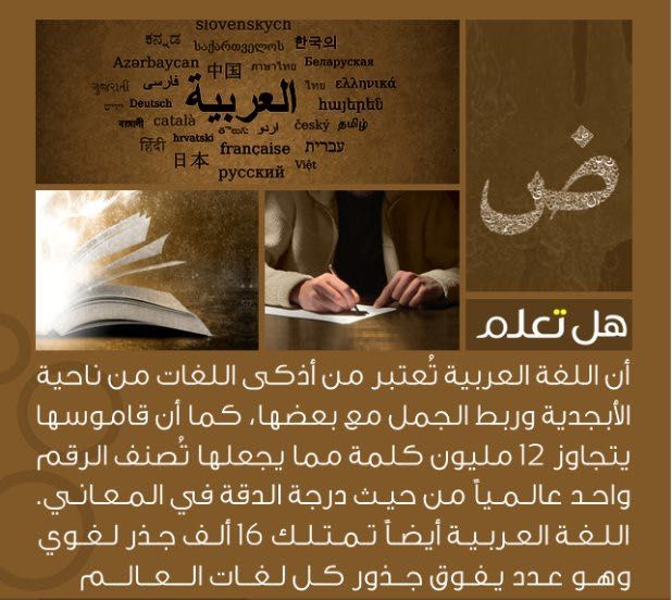Pin By Moufid Younos On معلومات عامة Science Quotes Wisdom Quotes Life Knowledge Quotes