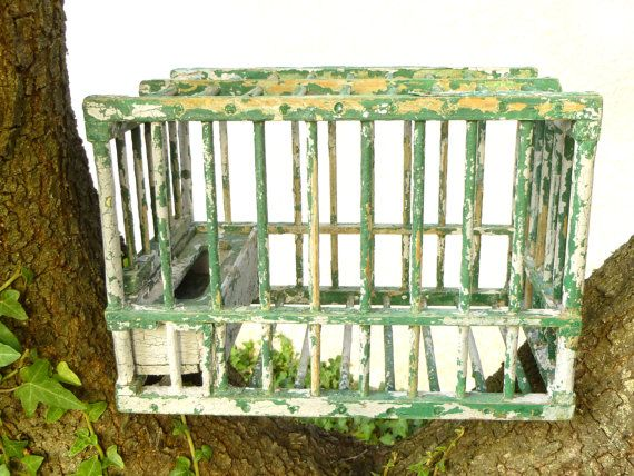 Cage Bird Wooden Shabby Chic French Vintage Old Small Green And