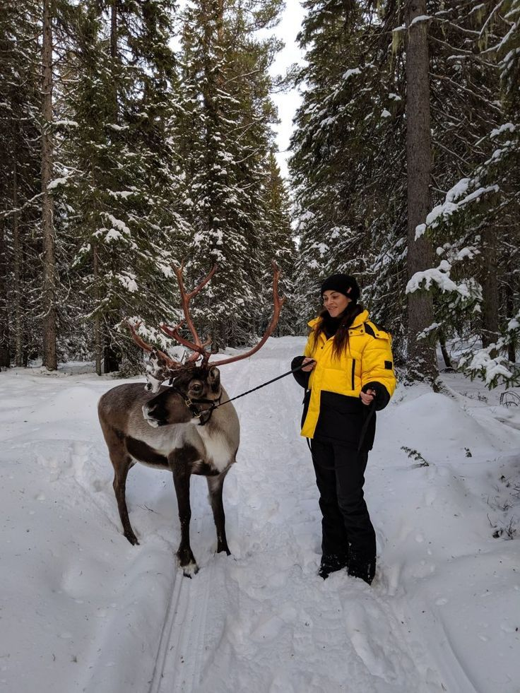 Photo of Visit Jamtland county, Sweden's winter wonderland – Les Berlinettes