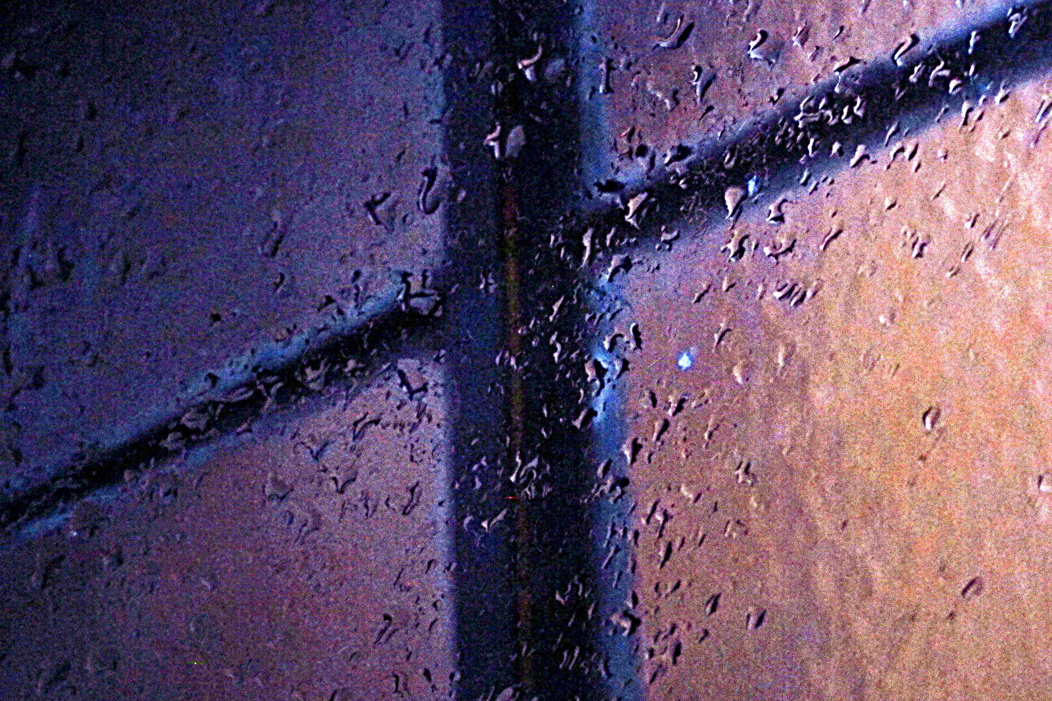 Dia de lluvia I