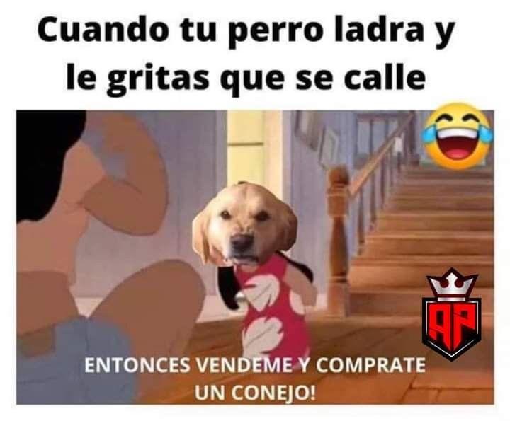 Pin De Sofixxxxxx Del La 23 En 3 Memes Comicos Memes Divertidos Memes Sarcasticos