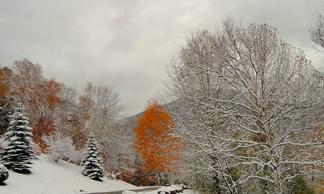 When Fall & Winter collide
