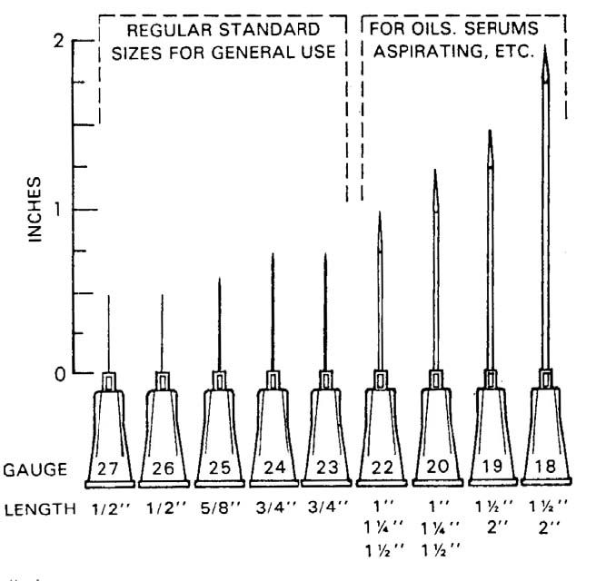 Bigger the number needle small gauge injection size chart also rh pinterest