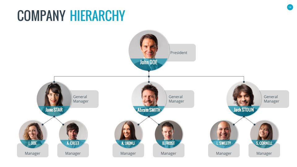Organizational Chart And Hierarchy Powerpoint Presentation