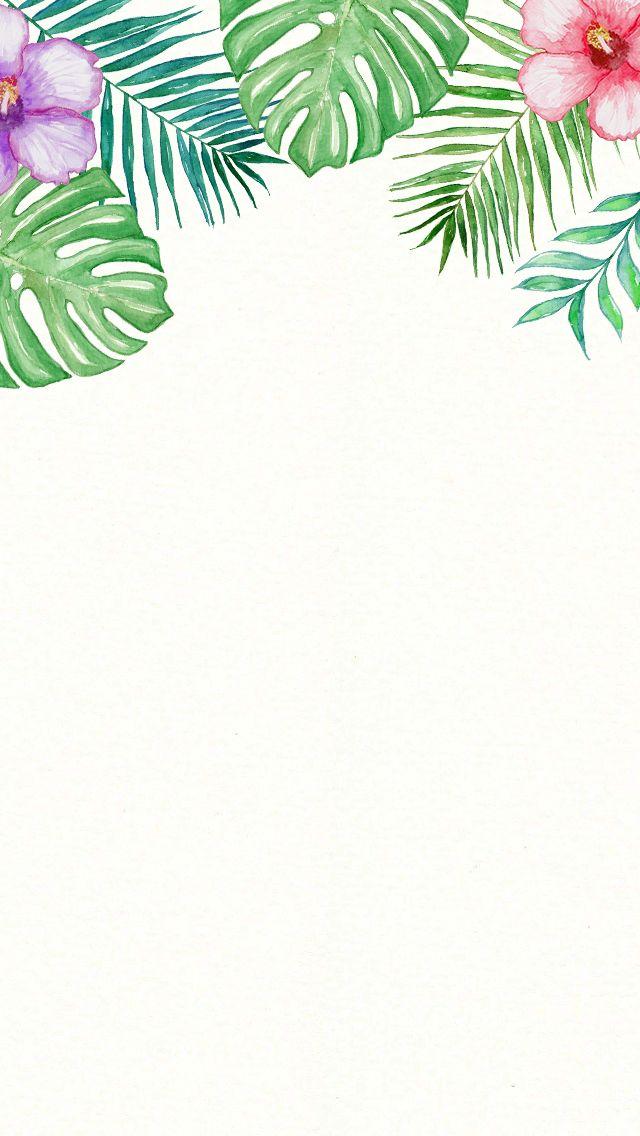 Tumblr Tree Wallpaper Palm Leaves