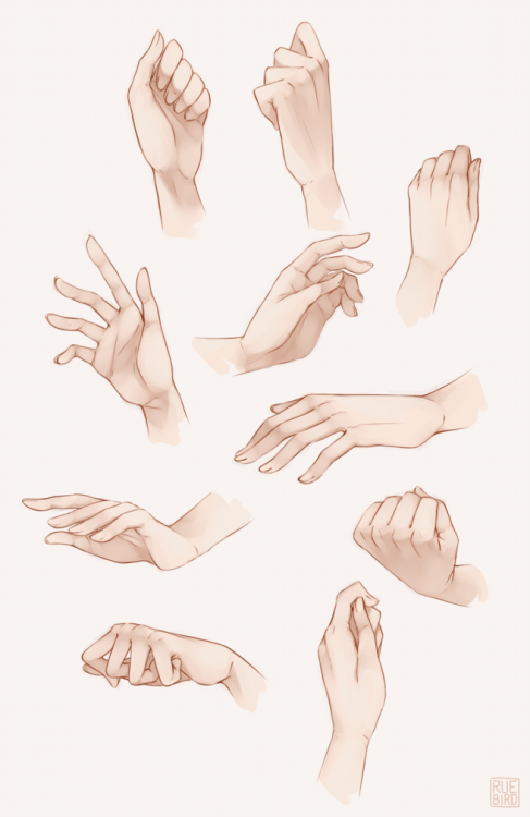 Hands Drawing References Hand Drawing Reference Hand Reference Art Reference