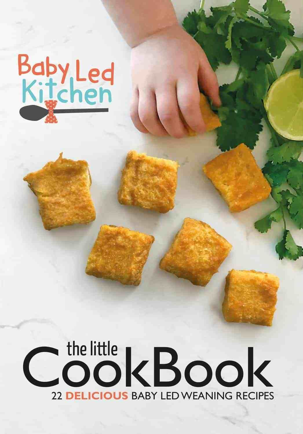 Baby led weaning recipe cook book for 6 months baby led