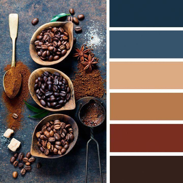 Blue And Brown Color Palette Inspired By Coffee,coffee