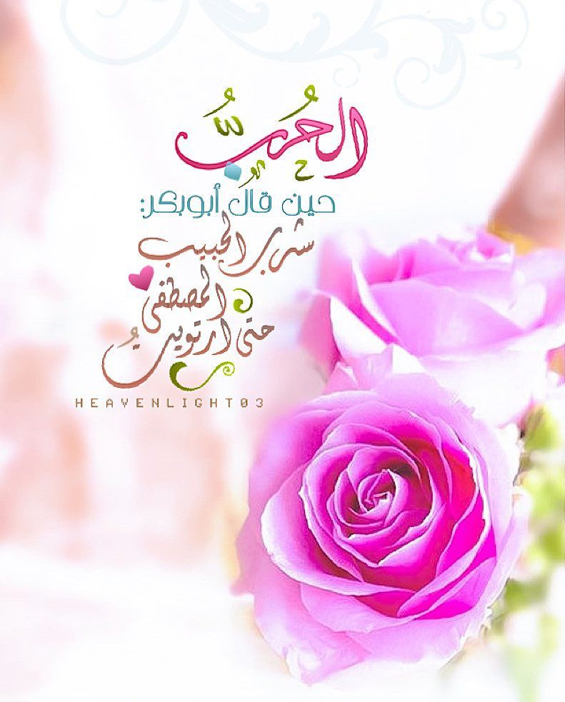 630 Likes 28 Comments Um Rakan Heavenlight03 On Instagram اسق قلوب الصابرين فرحا يا الله رمضان رم Islamic Pictures Flowers Pictures