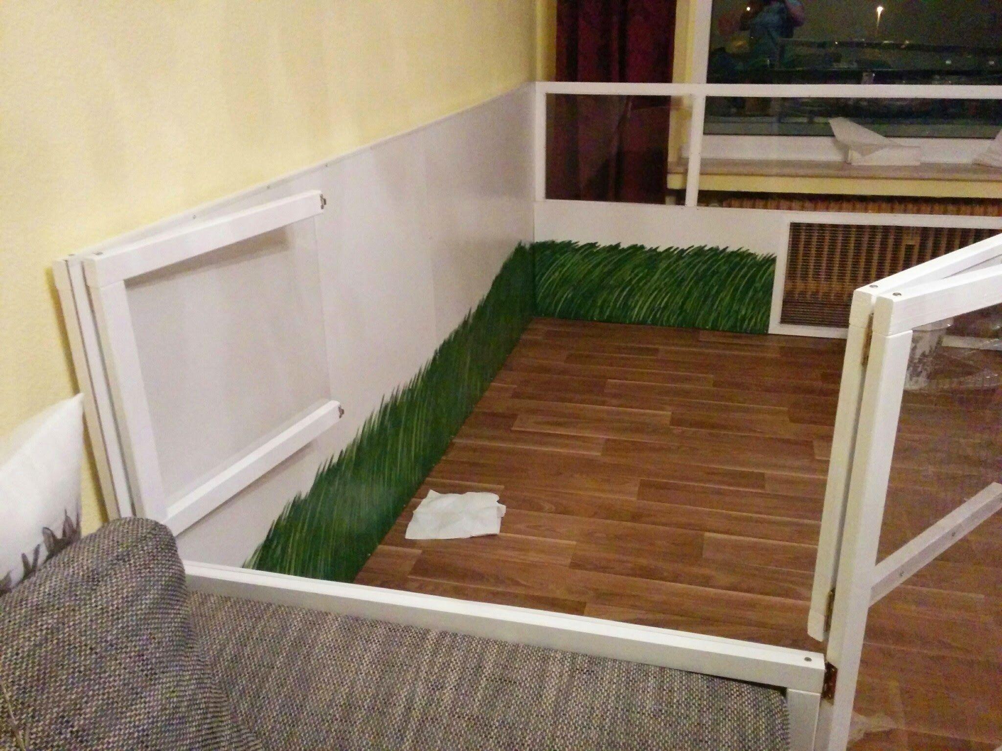 kaninchen treppe