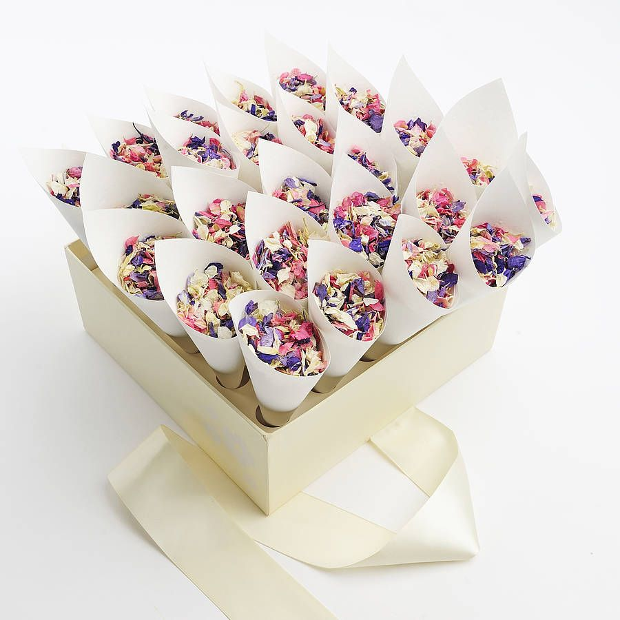 25 Biodegradable Wedding Petal Confetti Cones