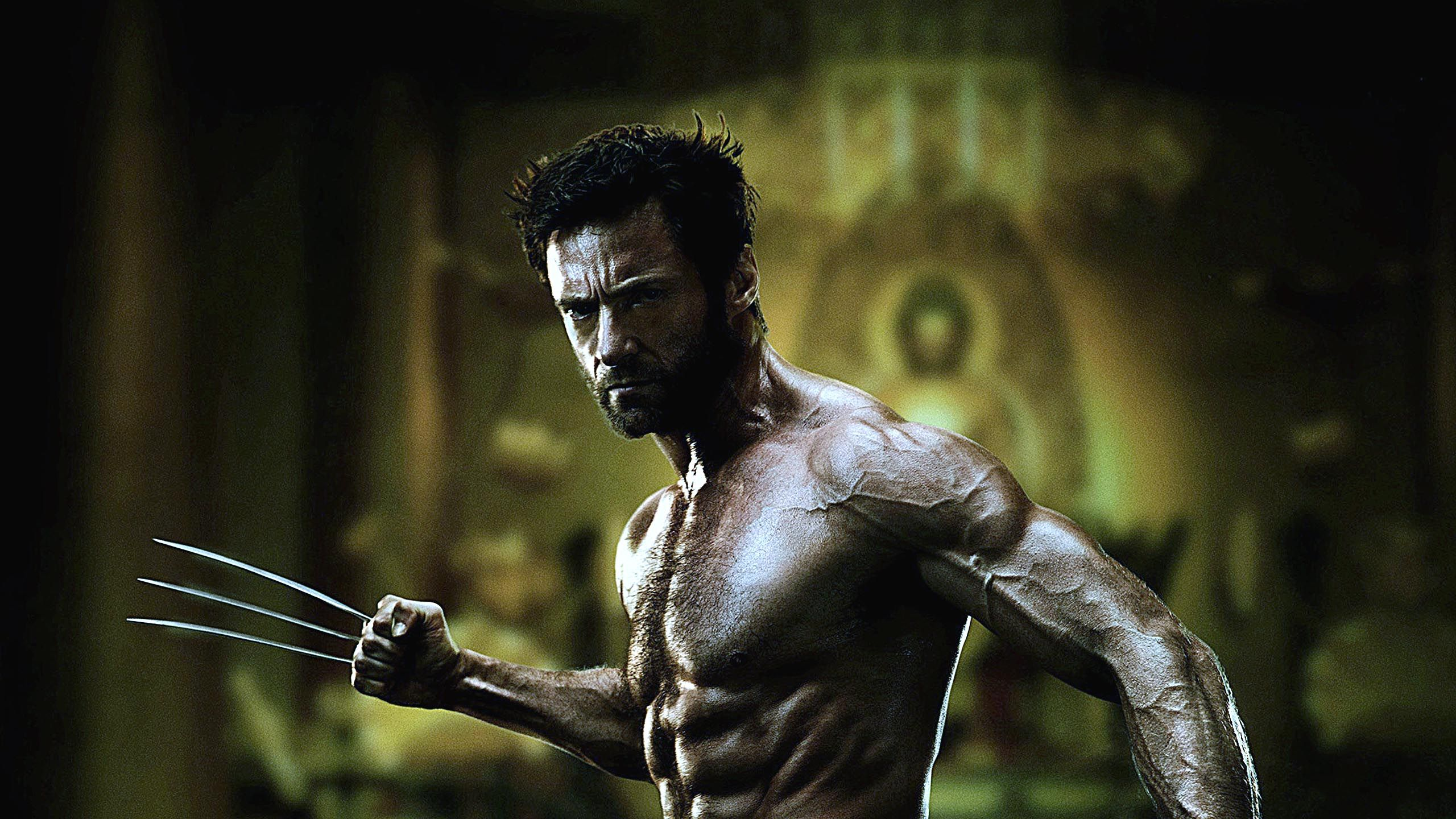 Wolverine facial hair http1080wallpaperwolverine facial 10 hair raising facts about wolverine voltagebd Images