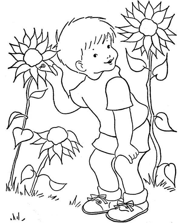 A Boy And Sunflower Coloring Page Download & Print