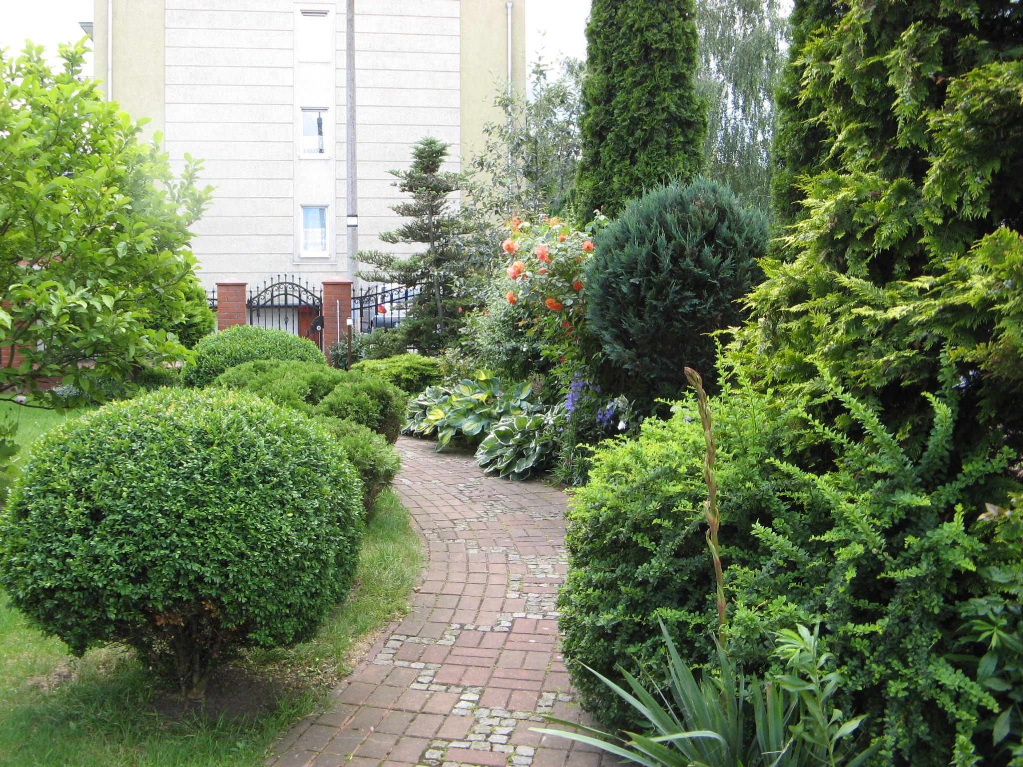 ogród u mojej mamy