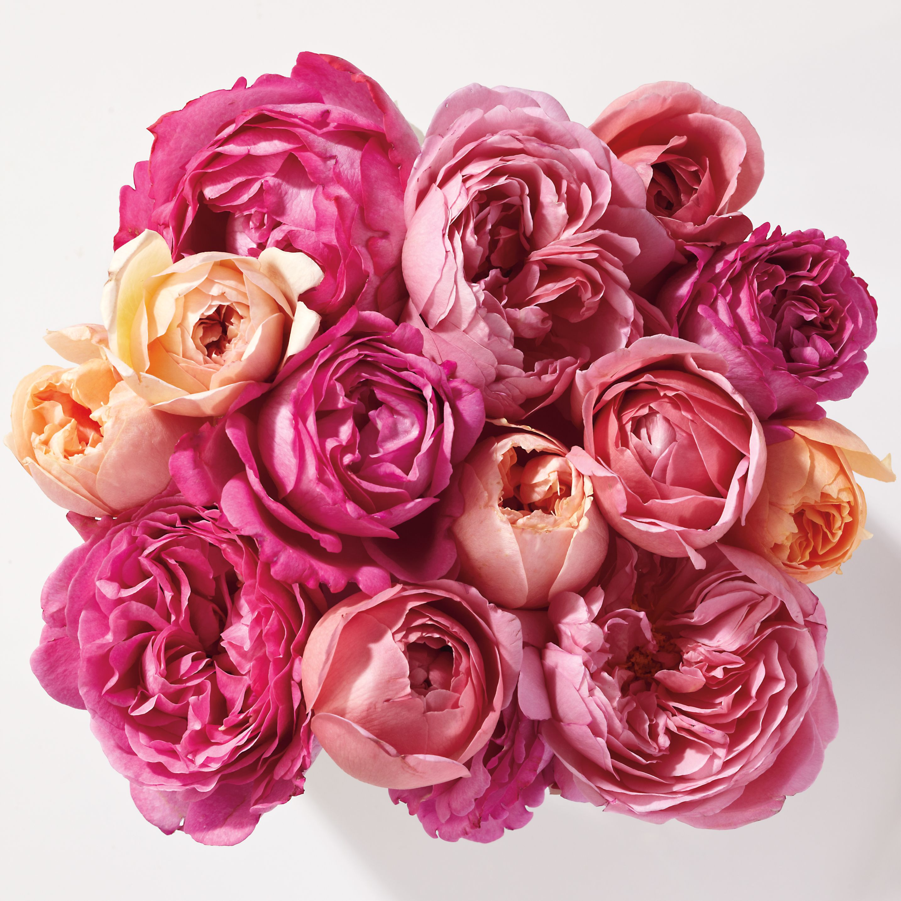 Play Hostess Of The Prettiest In Pink Rose Garden Party Birthday Flowers Bouquet Paper Roses Flowers