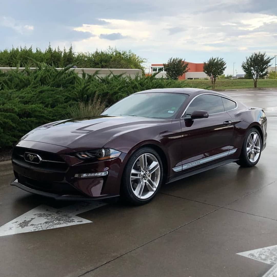 1,093 Likes, 4 Comments Mustang_Elite (mustang_elite