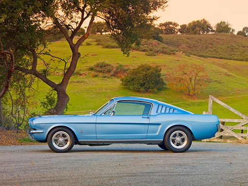 Mustang 1965 Fastback Ford Classic Cars Classic Mustang Vintage Mustang