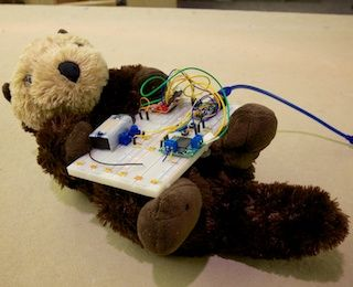 Ollie The Therapy Otter Robot For Dementia Patients Animals