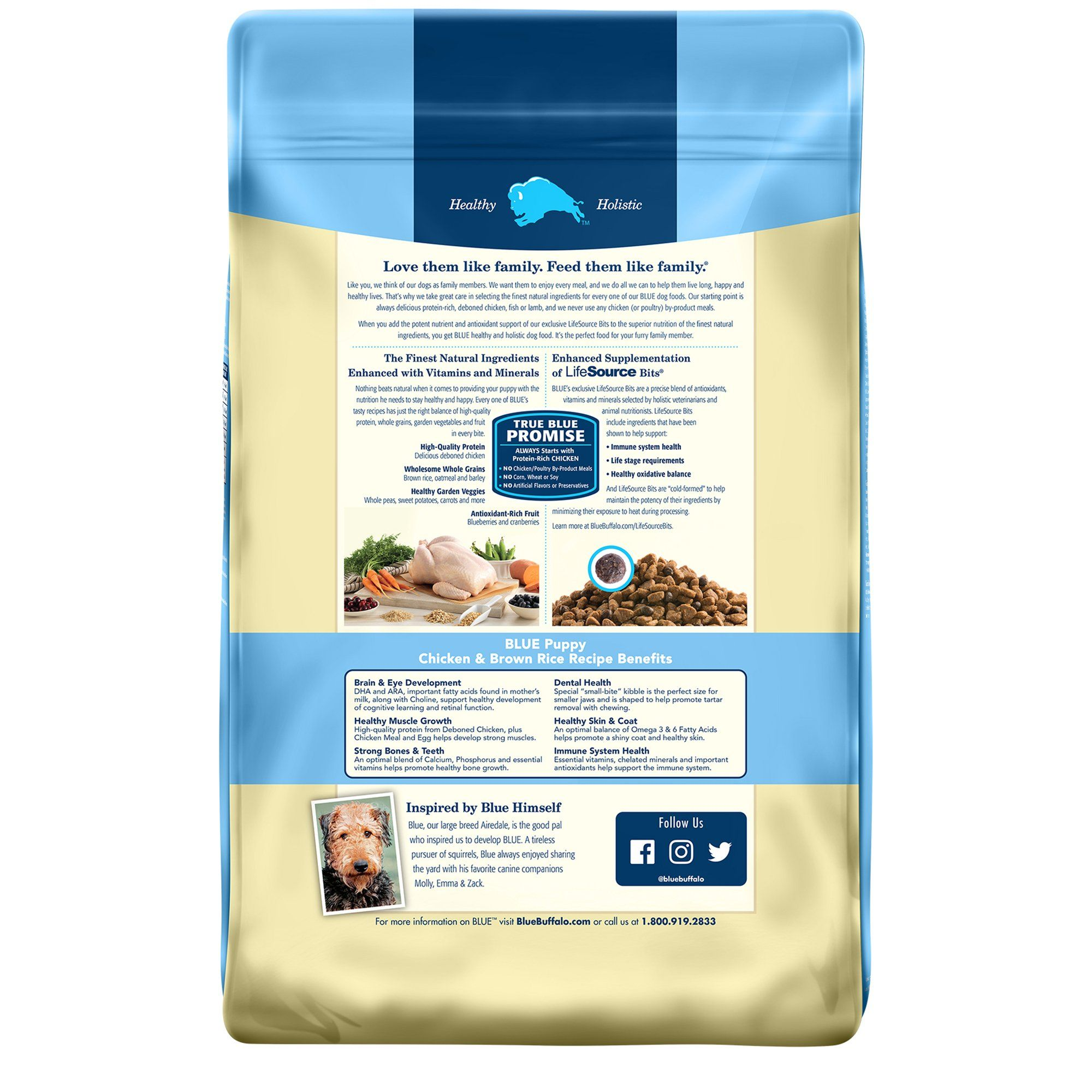 Blue Buffalo Blue Life Protection Formula Puppy Chicken Brown